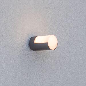 Eco-Light LED venkovní nástěnné světlo Cyra, jedna žárovka