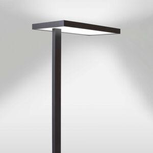 Lenneper LED kancelářská stojací lampa Lola, 3000 K, DALI