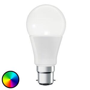 LEDVANCE SMART+ LEDVANCE SMART+ ZigBee B22d 10W RGB 2000-6500K