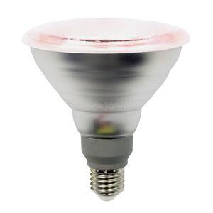 LIGHTME LED lampa na rostliny E27 PAR38 12W 50° úhel