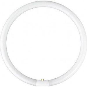 Kruhová zářivka YH 22W/4000K G10q